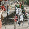 Au Temps des Remparts, spectacle historique de Provins