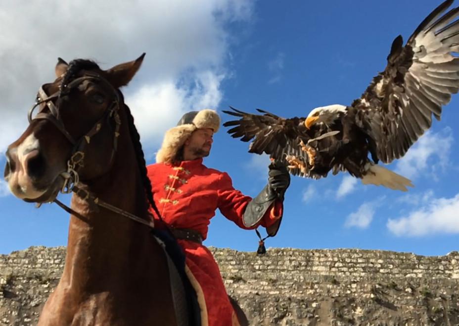 Les Aigles des Remparts, spectacle historique de Provins