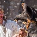 The Eagles of the Ramparts, medieval show in Provins