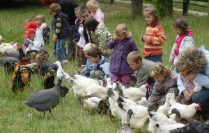 Ferme pédagogique de Saint-Hilliers AEDF, Hameau de Savigny proche de Provins