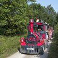 Le petit train entre l'Office de Tourisme et Ferra Botanica, le vélorail de La Ferté-Gaucher