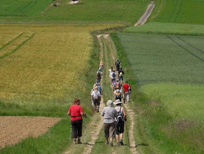 Hiking around Provins
