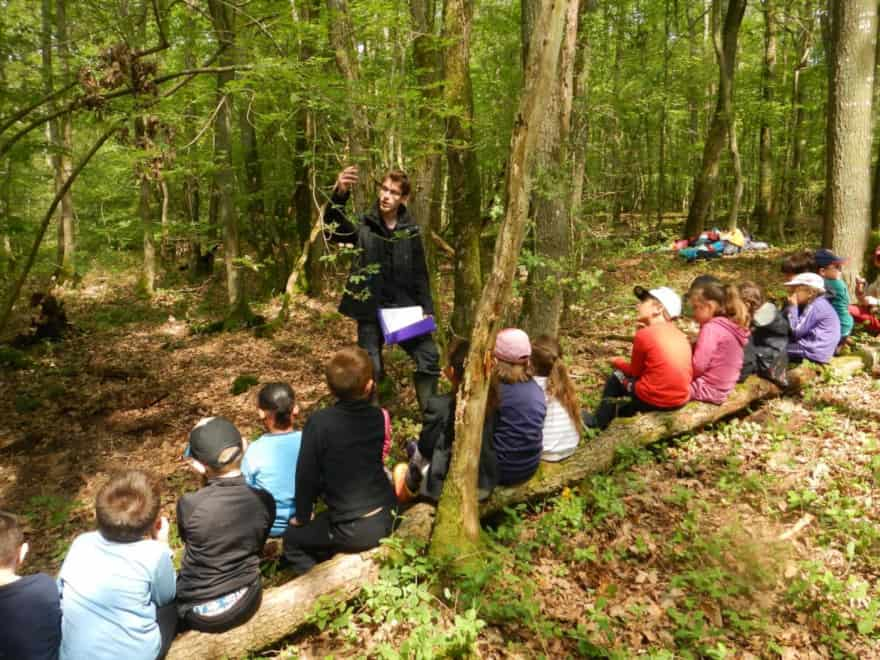Educational outings in the National Nature Reserve of La Bassée, close to Provins