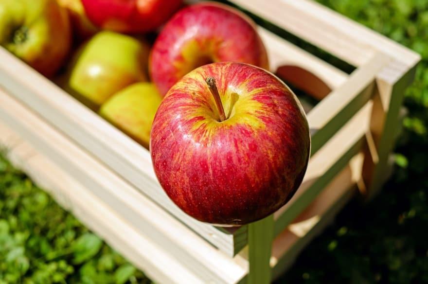 Fête de la Pomme à Donnemarie-Dontilly, proche de Provins