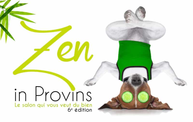 Salon Zen in Provins