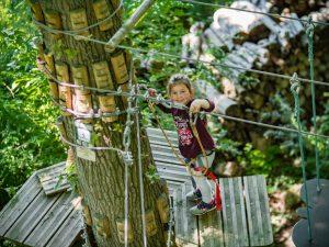 Jumping Forest, parc d'accrobranche, archery battle et laser game, à Chenoise proche de Provins