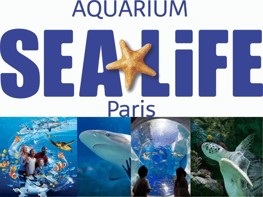 Partenariat entre la cité médiévale de Provins et l'aquarium Sealife Paris