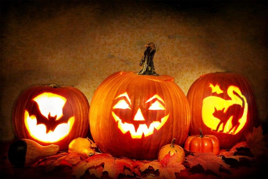 Animations Halloween à Provins et dans sa région