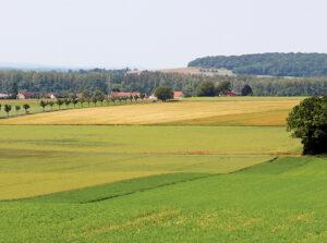 Au cœur du Montois, randonnée pédestre dans le Bassée-Montois, région de Provins