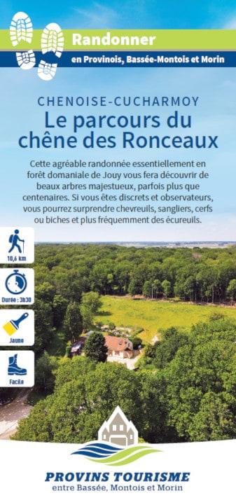 Le parcours du chêne des Ronceaux, randonnée pédestre dans le Provinois, région de Provins
