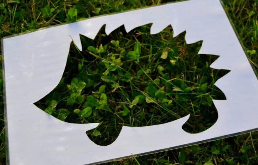 Visite guidée Naturaliste au départ de Ferra Botanica, à la Ferté-Gaucher proche de Provins