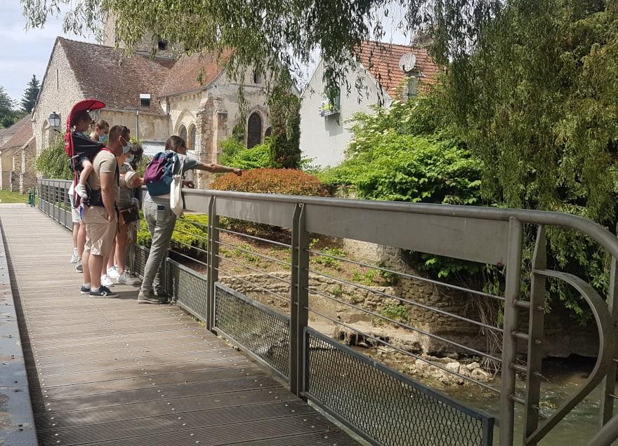Visite guidée Naturaliste gratuite à Saint-Cyr-sur-Morin, proche de Provins