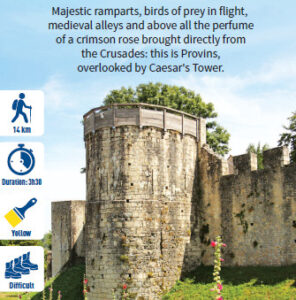 At the gates of Provins, hiking in the Provinois, Provins region