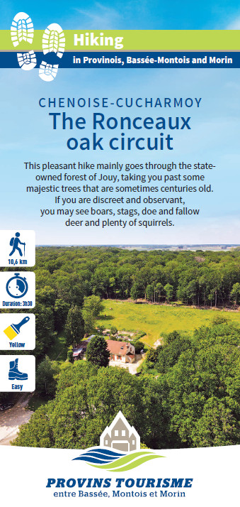 The Ronceaux oak circuit, hiking in the Provinois, Provins region